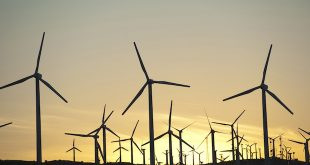 Ökostrom in Argentinien: Ein Aufsteiger im Profil